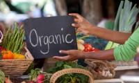 農薬がたくさん含まれているアメリカの野菜と果物